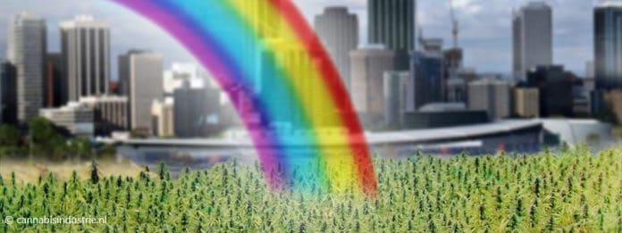 cannabis belastingen Massachusetts cbd olie coffeeshp dizzy duck den haag 5000 clever leaves zkittlez wiet
