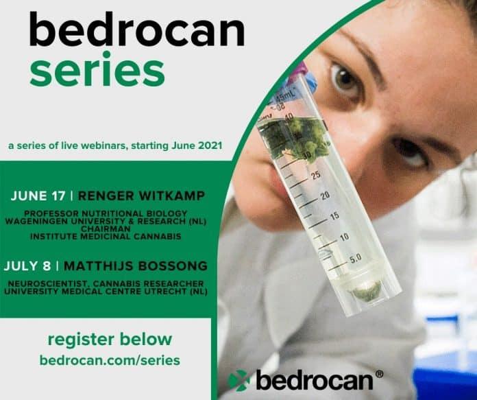 bedrocan series webinars medicinale cannabis