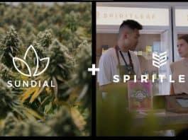 sundial growers spiritleaf